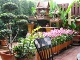 Lamphu Tree House - Bangkok