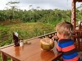 Indonesie Bali jongenkijktuitoprijstvelden6 (160x120)