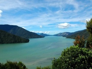 marlborough sounds3