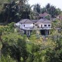 The Yin-Yang - Bali Ubud