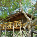 Pezulu Treehouse Lodge - Hoedspruit