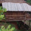 Tree Top Eco Lodge - Ban Lung