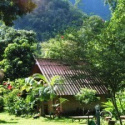 Malee's Nature Lovers Bungalow - Chiang Dao