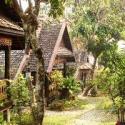Buffalo Hill Guesthouse - Chiang Rai