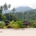 Bushman - Pulau Tioman
