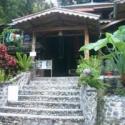 Green Hill Guesthouse - Sumatra Bukit Lawang
