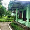 Eco Lodge - Sumatra Bukit Lawang