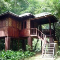 Our Jungle House - Khao Sok NP